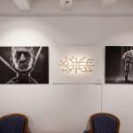 Galerie IMG_5632