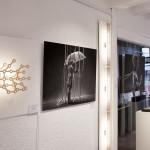 Galerie IMG_5638