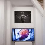 Galerie IMG_5654